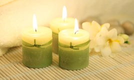 зеленая белизна Стоковые Фотографии RF