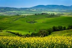 Зеленая весна Rolling Hills в Тоскане Италии стоковые изображения