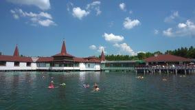 Зеленая вода озера Heviz видеоматериал