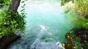 Зеленая вода реки сток-видео