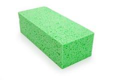 зеленая губка Стоковая Фотография