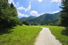 зеленая долина весны Стоковое Изображение RF