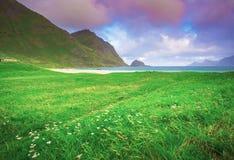 Зеленая долина в весеннем времени Стоковая Фотография RF