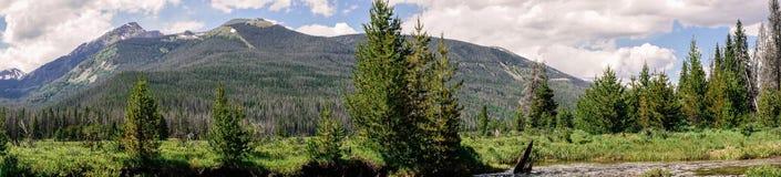 Зеленая долина горы лета, национальный парк скалистой горы colorado Природа Америки Стоковое Фото