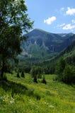 Зеленая долина горы Стоковое Изображение RF