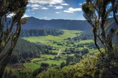 Зеленая долина на Азорских островах стоковое изображение rf