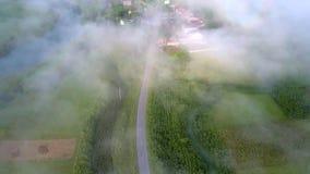Зеленая долина с деревней дороги приходит через помох утра акции видеоматериалы