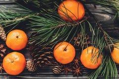 Зеленая ель разветвляет с конусами tangerine и анисовки и сосны на ru Стоковые Фото