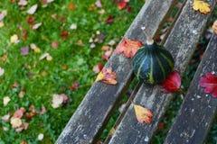 Зеленая закручивая тыква на выдержанной деревянной скамье Стоковое фото RF