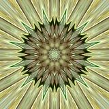 зеленая звезда мандала Стоковые Изображения