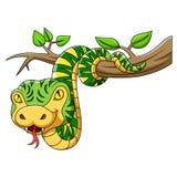 Зеленая змейка на дереве иллюстрация вектора
