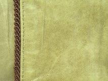 зеленая кожа Стоковые Фото