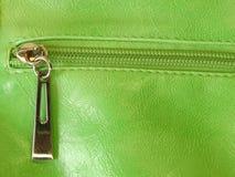 зеленая кожа Стоковое Изображение RF
