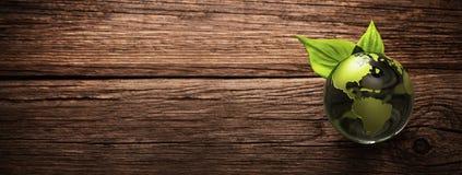 Зеленая концепция экологичности окружающей среды планеты стоковая фотография rf
