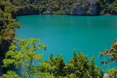 зеленая лагуна Стоковое Изображение RF