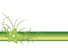 зеленая линия граници Стоковое Фото