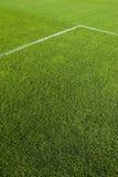 зеленая линия травы Стоковое Фото