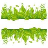 Зеленая линия eco с листьями иллюстрация штока