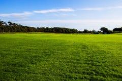 Зеленая лужайка на землях парка страны Margam, китах стоковая фотография rf