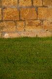Зеленая лужайка со стеной стоковые фотографии rf