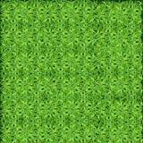Зеленая лужайка, трава Текстура зеленой лужайки Стоковая Фотография RF