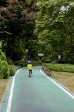 Зеленая майна велосипеда в парке Стоковые Фотографии RF