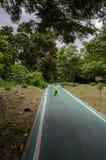 Зеленая майна велосипеда в парке Стоковое Изображение