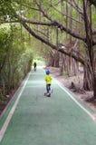Зеленая майна велосипеда в парке Стоковая Фотография