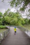 Зеленая майна велосипеда в парке Стоковые Изображения RF
