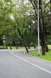 Зеленая майна велосипеда в парке Стоковое фото RF