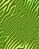 зеленая металлическая зебра печати Стоковое Фото
