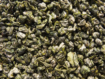 зеленая названная обезьяна чаем Стоковые Фотографии RF