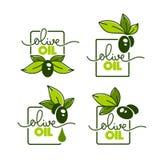 Зеленая оливка выходит, помечающ буквами составы и масло брызгает, ve иллюстрация штока