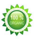 зеленая органическая розетка 100 Стоковое фото RF
