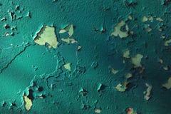 Зеленая острая предпосылка стены никто стоковые фотографии rf