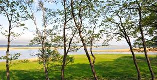 зеленая панорама Стоковые Изображения RF