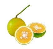 зеленая половинная апельсиновая корка Стоковые Фото