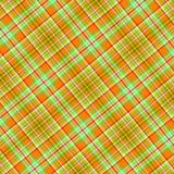 зеленая померанцовая шотландка Стоковая Фотография RF