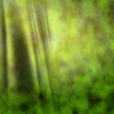 Зеленая предпосылка занавеса Стоковое фото RF