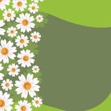 Зеленая предпосылка с абстрактной весной Стоковое Изображение