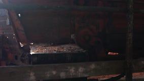Зеленая прессформа на стенах страшное место старая амбара нутряная съемка steadicam видеоматериал