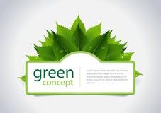 Зеленая принципиальная схема Стоковые Фотографии RF