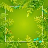 Зеленая рамка сезона Стоковая Фотография