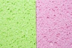 зеленая розовая губка Стоковое Изображение