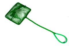 Зеленая сеть рыб Стоковое Изображение RF