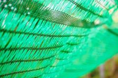 Зеленая сеть shading защищает свет солнца Стоковая Фотография RF