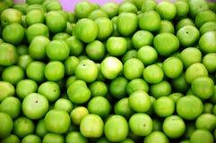 зеленая слива Стоковое Изображение RF