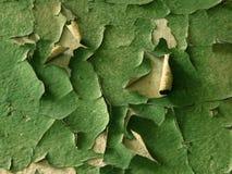 зеленая старая краска Стоковая Фотография