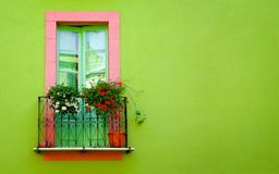 зеленая стена Стоковое Изображение