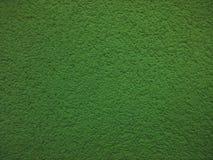 зеленая стена Стоковые Фото